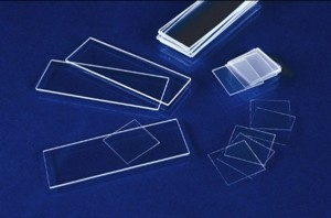Microscope Slides pic